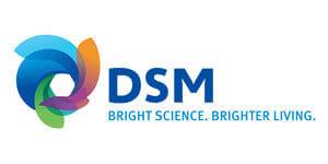 DSM Logo- Xperts Pest Control