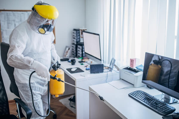 pest control services for IT industry
